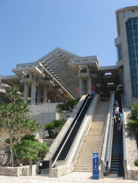 沖縄美ら海水族館69