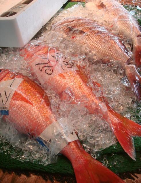 魚市場@鹿児島10