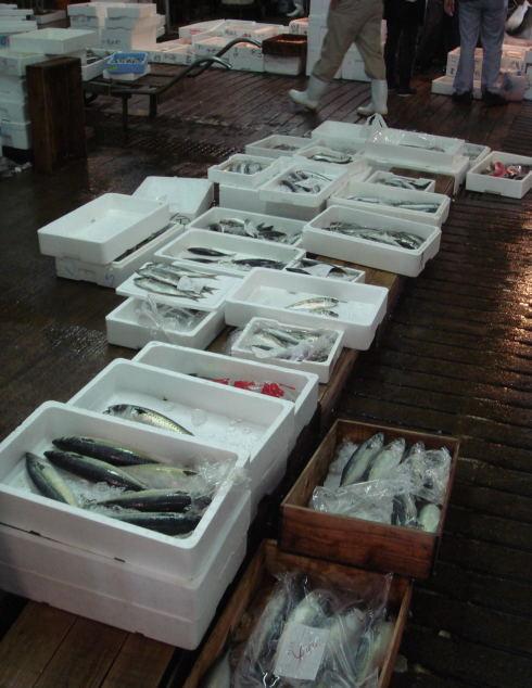 魚市場@鹿児島20