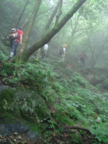 井原山49
