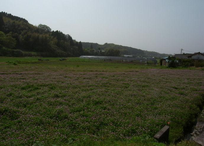 平山温泉50