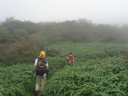 井原山59