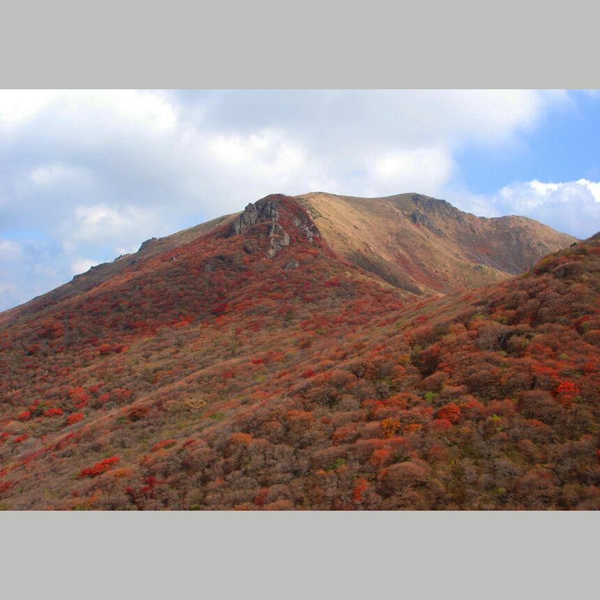 2006_10_28_ku41