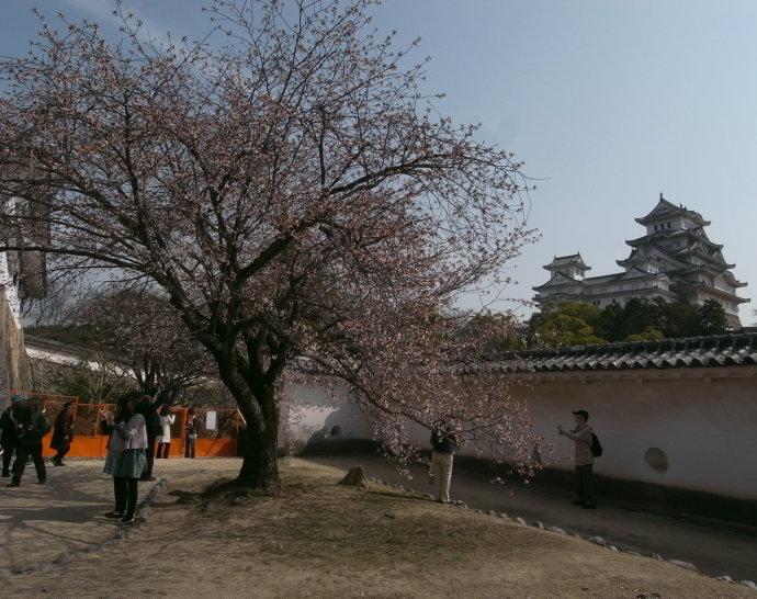姫路城42