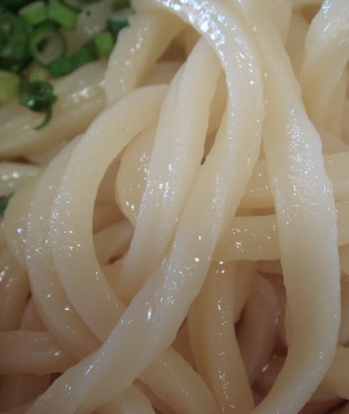 森製麺所@高松市