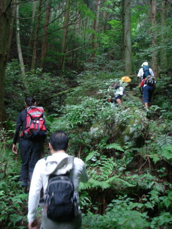 井原山22