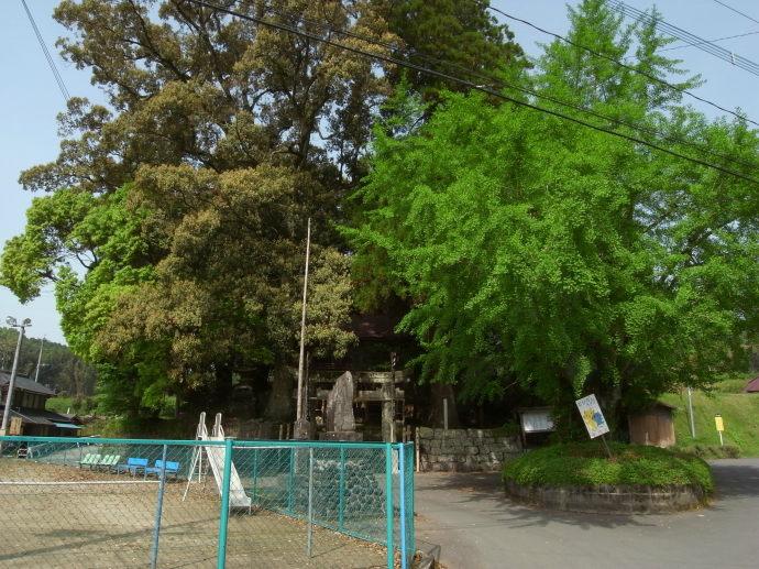 平山温泉51