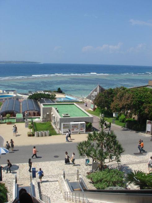 沖縄美ら海水族館42