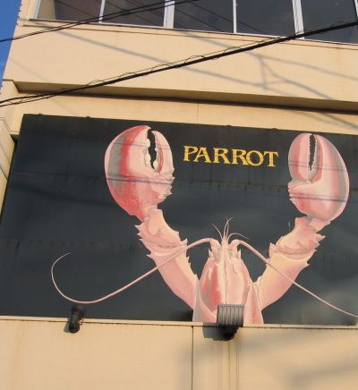 parrot11