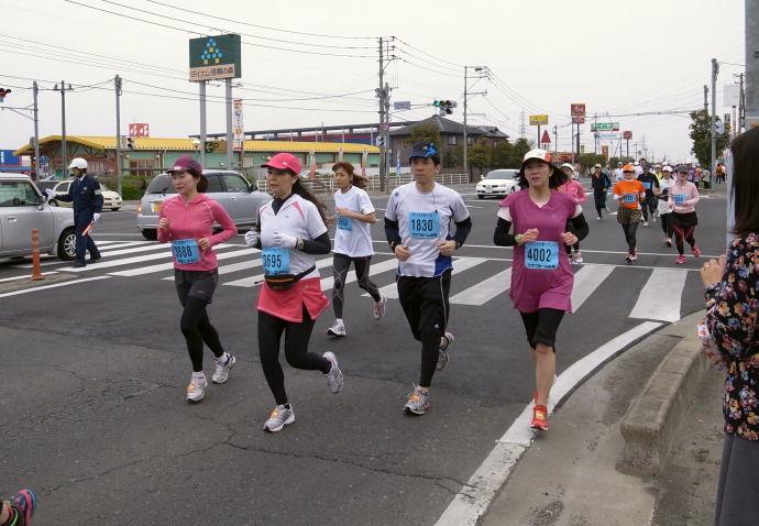 さが桜マラソン41