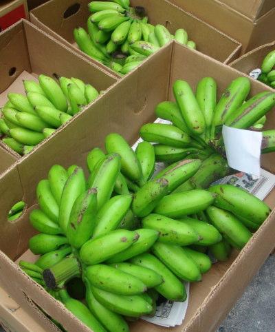 農連市場11