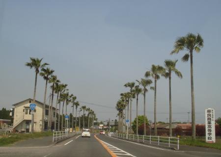 肝付町(鹿児島県)10