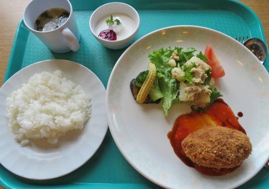 学生食堂3