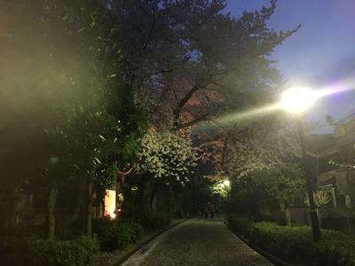 2016-04-04-18-28-49
