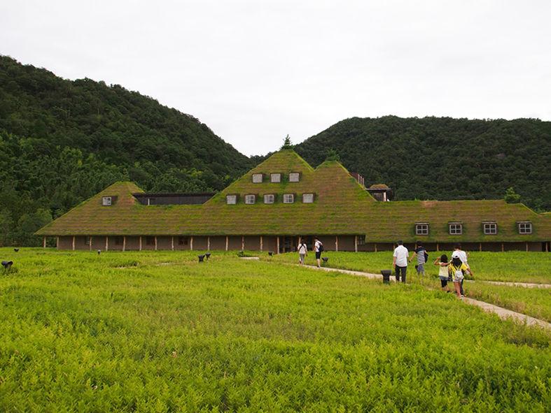 草屋根(ラ-コリーナ近江八幡)-1
