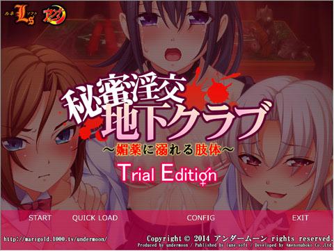 himitsu_trial_480