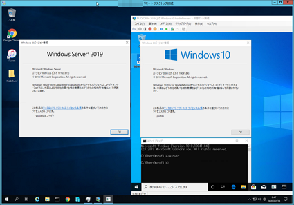Windows10PreviewOnWindowsServer2019