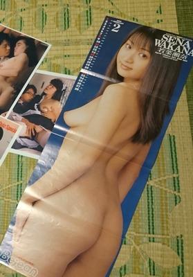 若菜瀬奈 ヌード (7)