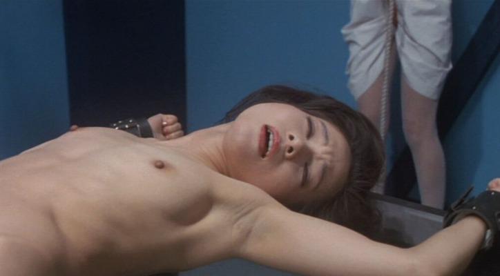 志麻いづみのヌード (15)