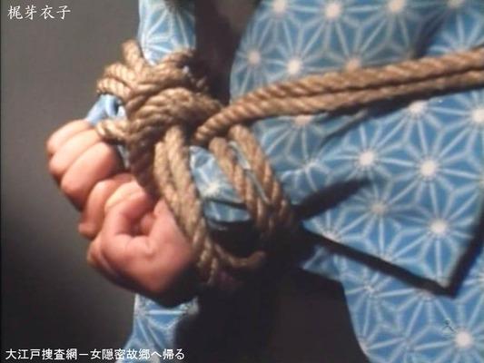 梶芽衣子のヌード (12)