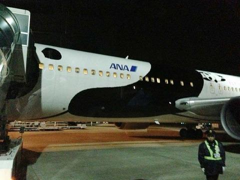 FlyingPanda2