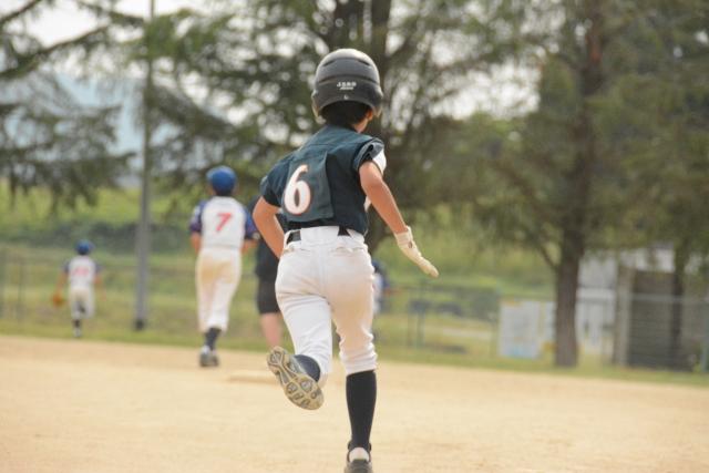 野球 直 番 園地