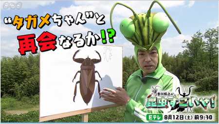 昆虫すごいぜ!