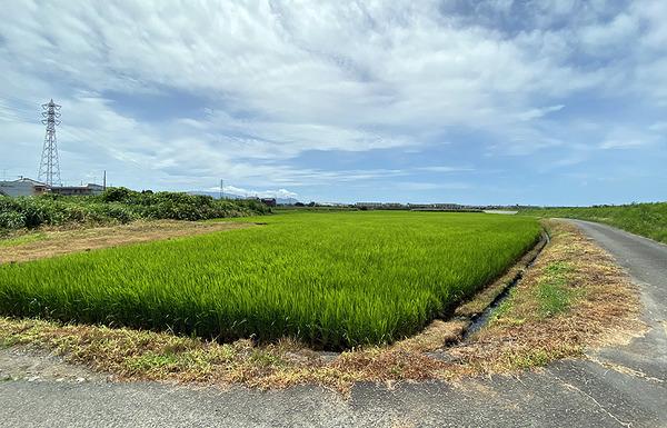 yanagisawa05
