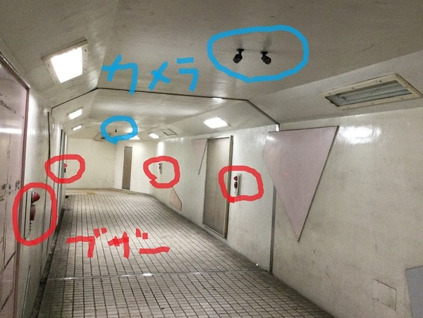 IMG_7813
