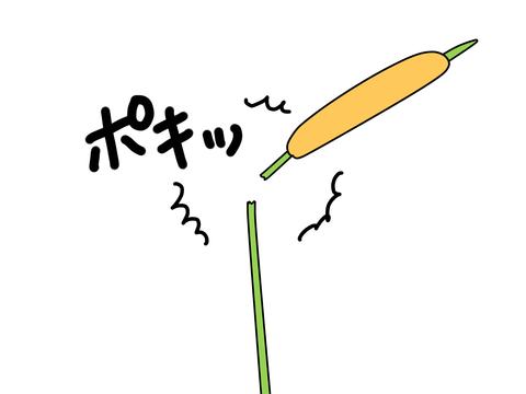 ファイル_000 (18)