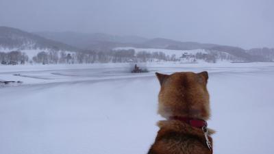 100328融雪3