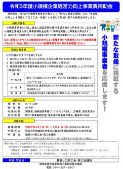 ⑤03-1+R3補助金の案内チラシ(県提供)