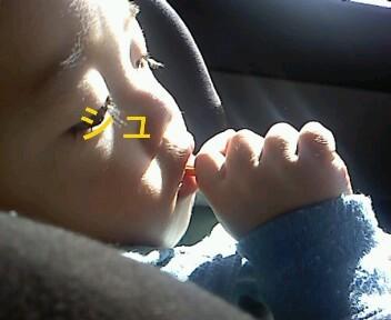 ハナペコブログ-Image0003.JPG