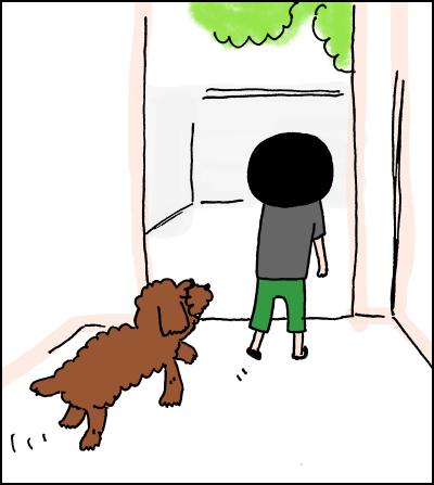 【犬】リクと過ごす
