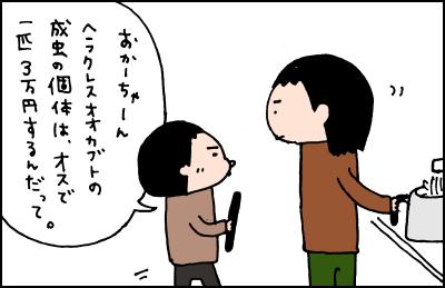 20190212_02