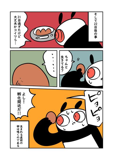 ニワ_003