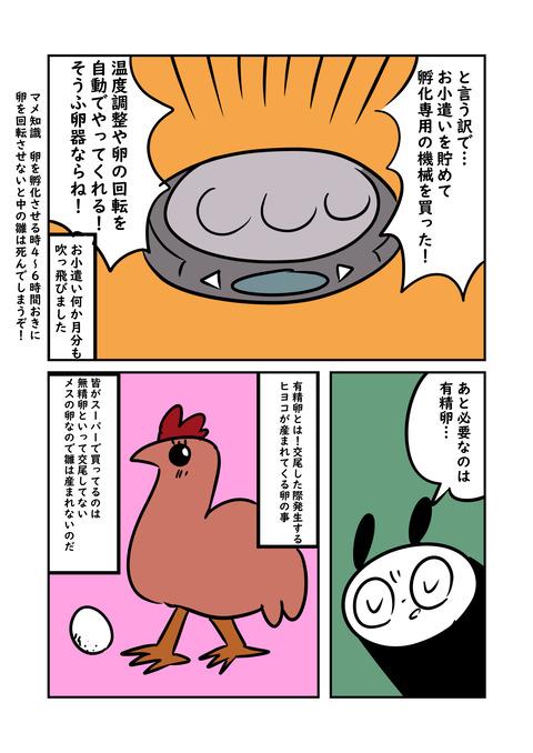 鶏_007
