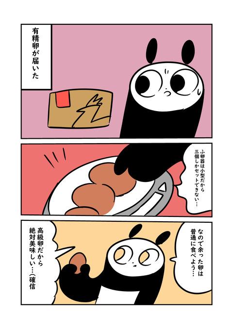 ニワ_001