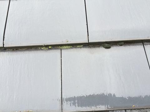 屋根洗浄前2