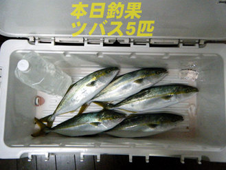 090917釣果