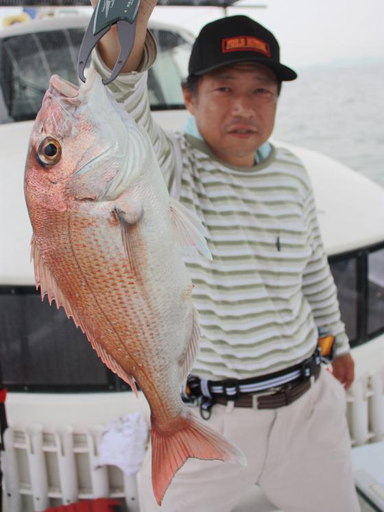 尾崎さん真鯛