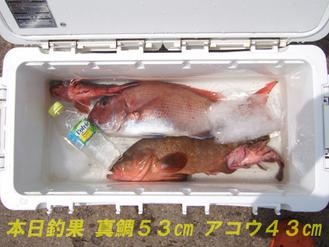 2008.06.12本日釣果