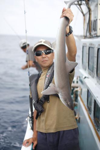 5U垣さんのサメ