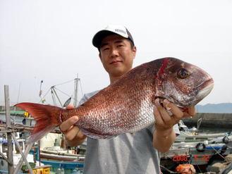 真鯛55cm雄