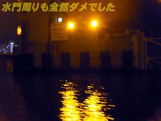夜ボートシーバス4