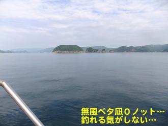 和歌山サバ3