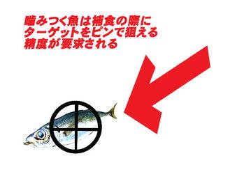 噛みつく魚