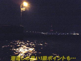 夜ボートシーバス2