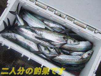09敦賀6