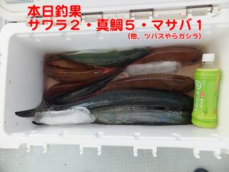 5本日釣果
